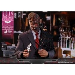 Hot Toys Batman The Dark Knight 1/6 Scale Two Face