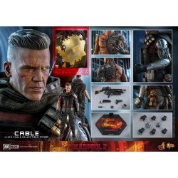 Hot Toys Deadpool 2  1/6 Scale Cable Exclusive Version