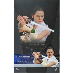 Hot Toys Star Wars: The Rise of Skywalker 1/6 Scale Rey and D-O