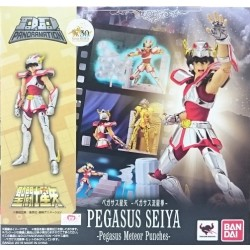 D.D.Panoramation Pegasus Seiya -Pegasus Meteor Fist-
