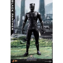 Hot Toys Black Panther 1/6 Scale Black Panther